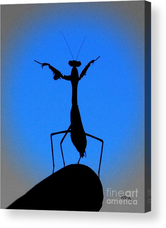 Conductor Acrylic Print featuring the photograph The Conductor by Patrick Witz