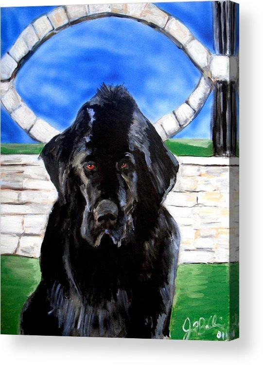 Dog Acrylic Print featuring the painting Newfoundland by Jon Baldwin Art