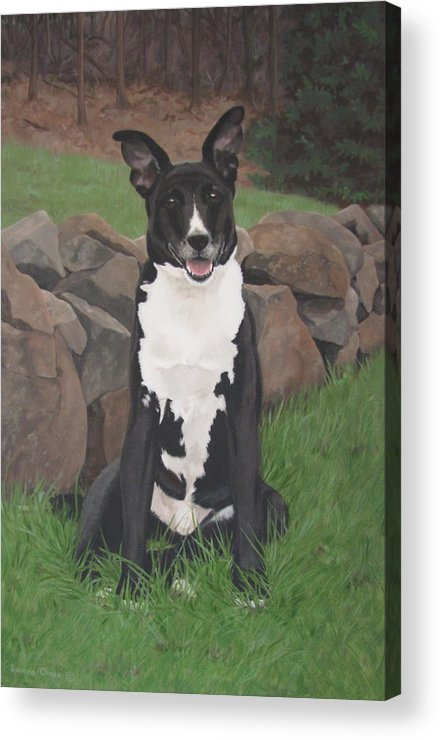 Black Dog Acrylic Print featuring the painting Capone by Sandra Chase
