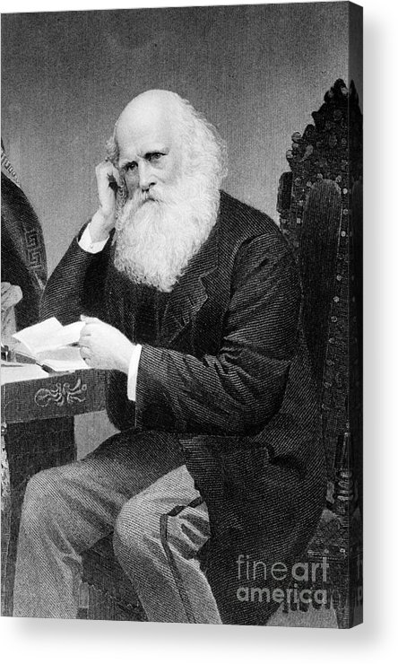 History Acrylic Print featuring the photograph William Cullen Bryant, American Poet by Photo Researchers