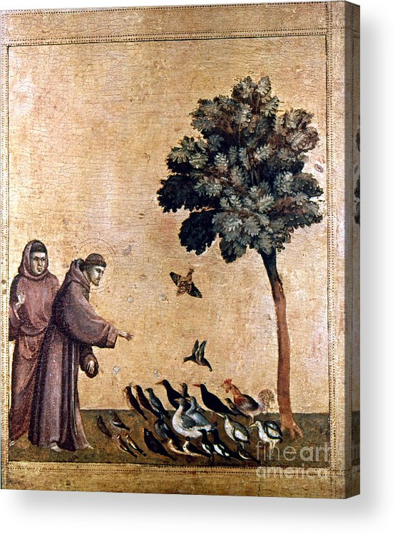 Aod Acrylic Print featuring the painting St. Francis Of Assisi by Granger