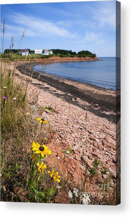 Prince Edward Island Acrylic Print featuring the photograph Prince Edward Island Coastline by Elena Elisseeva