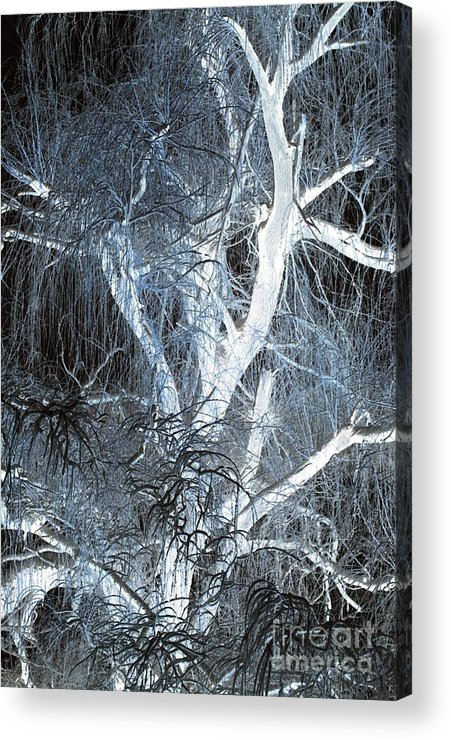 Snow Acrylic Print featuring the photograph Blue Snow by Kathleen Struckle