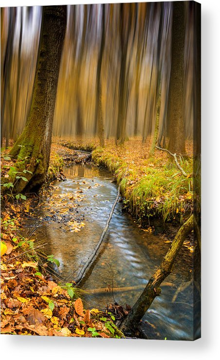 Woodland Acrylic Print featuring the photograph Forever Autumn by Ian Hufton