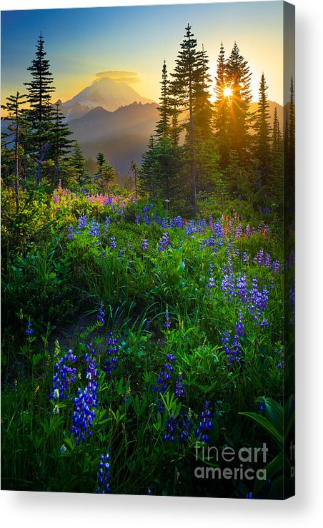 America Acrylic Print featuring the photograph Mount Rainier Sunburst by Inge Johnsson