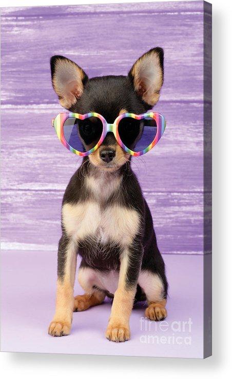 Sunglasses Acrylic Print featuring the digital art Rainbow Sunglasses by Greg Cuddiford