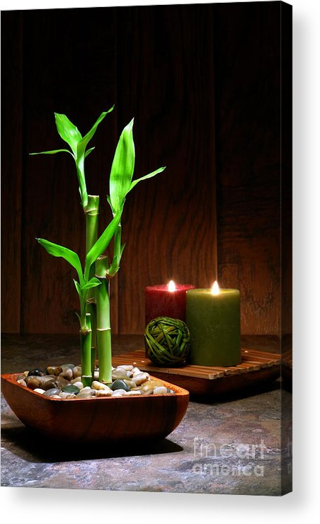 Bamboo Acrylic Print featuring the photograph Relaxation And Meditation by Olivier Le Queinec