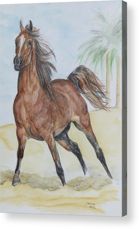 Horse Original Painting Acrylic Print featuring the painting Stretching Legs by Janina Suuronen