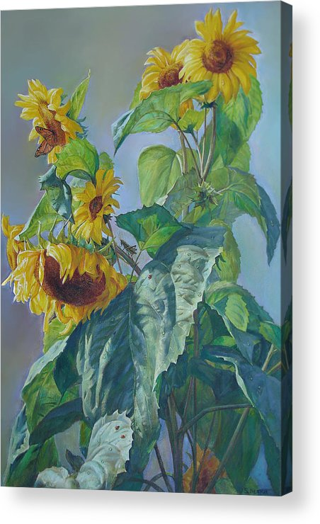 Sunflower Acrylic Print featuring the painting Sunflowers After The Rain by Svitozar Nenyuk