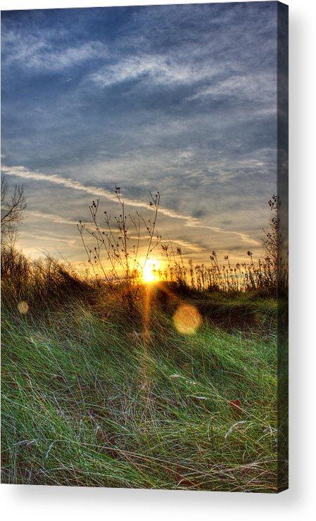 Sunrise Acrylic Print featuring the photograph Sunrise Through Grass by Tim Buisman