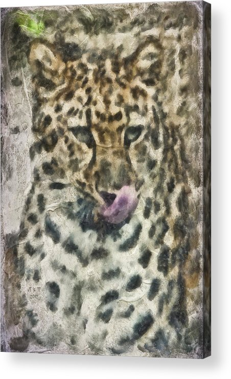 Cat Acrylic Print featuring the photograph That Was Delicious by Trish Tritz