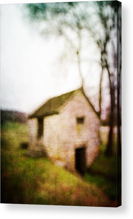 Blur Acrylic Print featuring the photograph Warner Park Springhouse by David Morel
