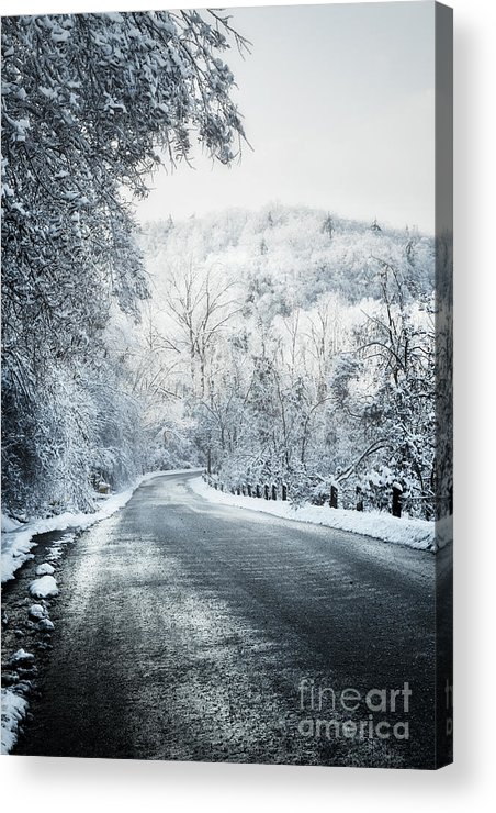 Winter Acrylic Print featuring the photograph Winter Road In Forest by Elena Elisseeva