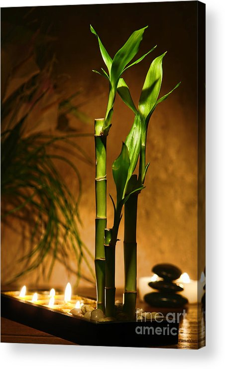 Bamboo Acrylic Print featuring the photograph Zen Time by Olivier Le Queinec