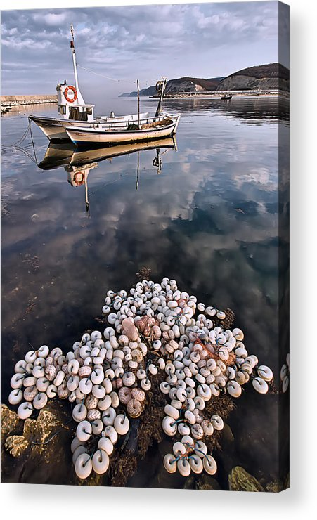 Fish Acrylic Print featuring the photograph Fishing - 7 by Okan YILMAZ