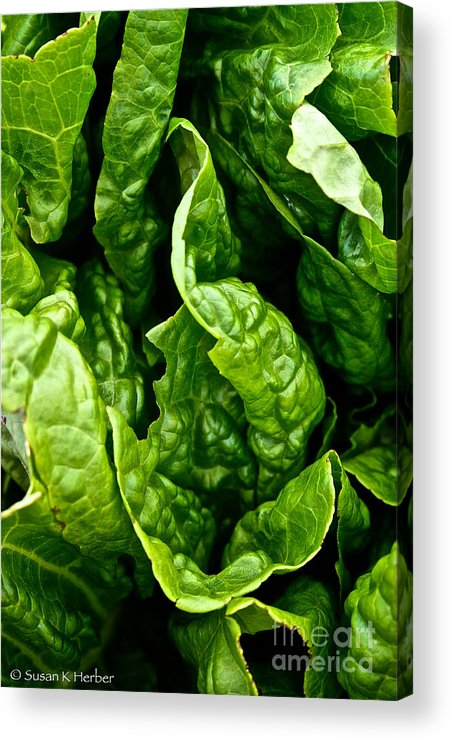 Food Acrylic Print featuring the photograph Garden Fresh by Susan Herber