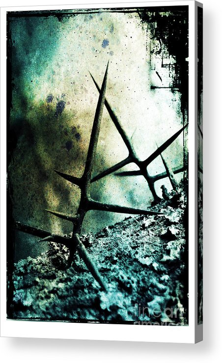 War Acrylic Print featuring the photograph Mortal Combat by Judi Bagwell