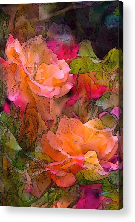 Floral Acrylic Print featuring the photograph Rose 146 by Pamela Cooper
