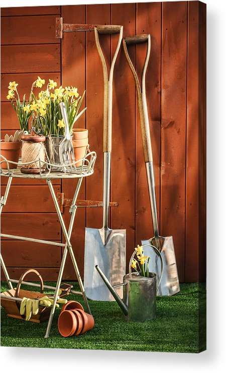 Garden Acrylic Print featuring the photograph Spring Gardening by Amanda And Christopher Elwell