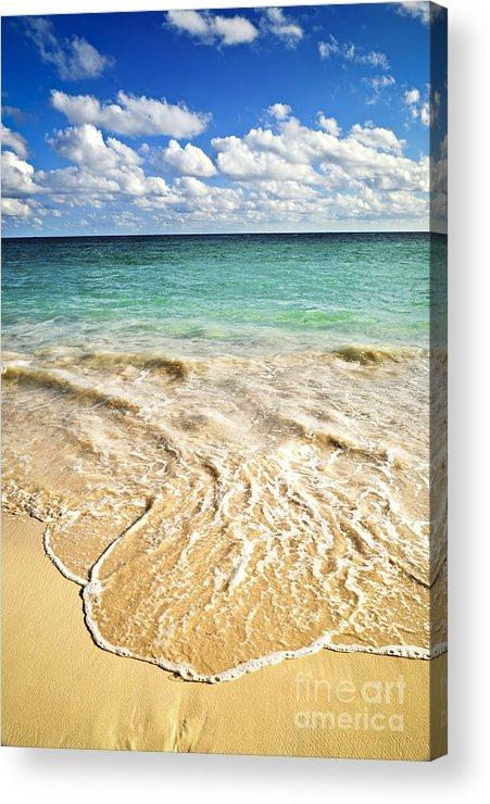 Beach Acrylic Print featuring the photograph Tropical Beach by Elena Elisseeva