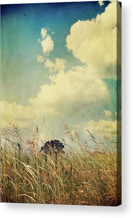 Clouds Acrylic Print featuring the photograph And The Livin's Easy by Laurie Search