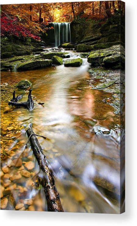 Autumn Acrylic Print featuring the photograph Autumnal Waterfall by Meirion Matthias