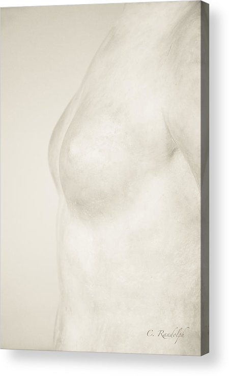 Nude Acrylic Print featuring the photograph Torso Suggested by Cheri Randolph