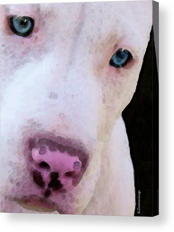 Pit Bull Acrylic Print featuring the painting Pit Bull Art - Not A Fighter by Sharon Cummings