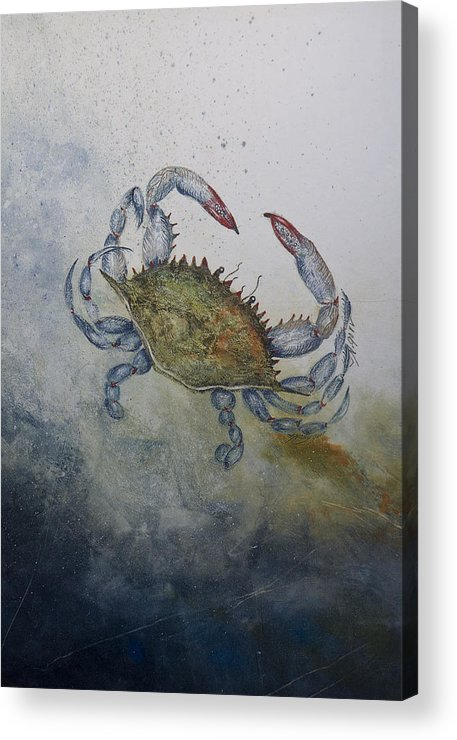 Crab Acrylic Print featuring the mixed media Blue Crab Print by Nancy Gorr