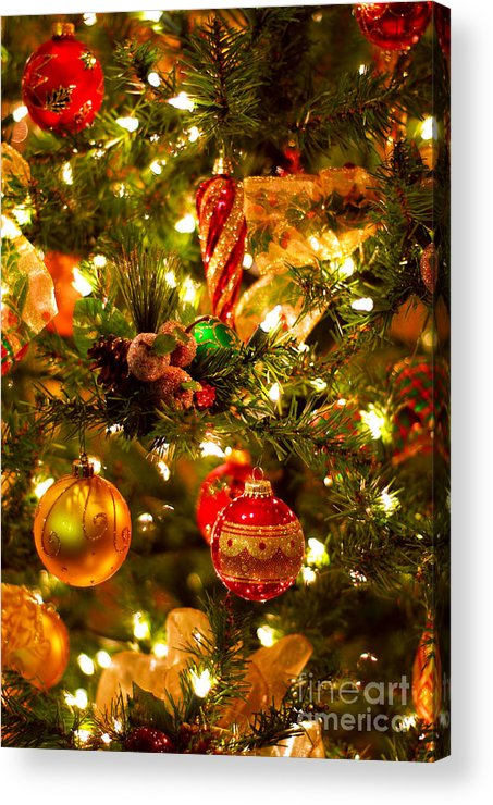 Christmas Acrylic Print featuring the photograph Christmas Tree Background by Elena Elisseeva