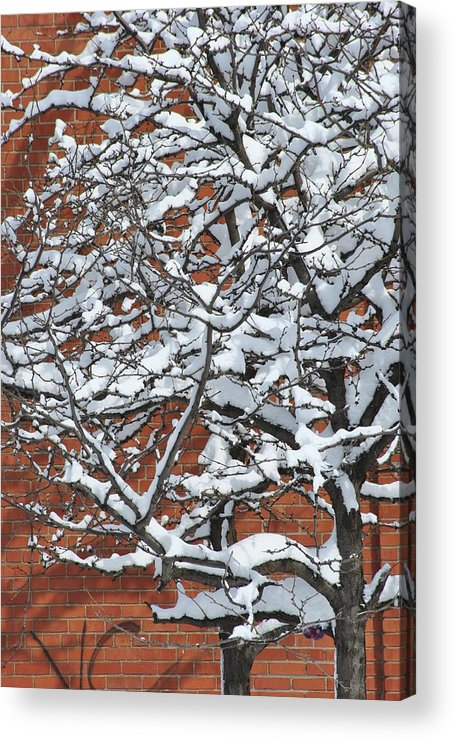 Snow Acrylic Print featuring the photograph The Snow And The Wall by Frederico Borges