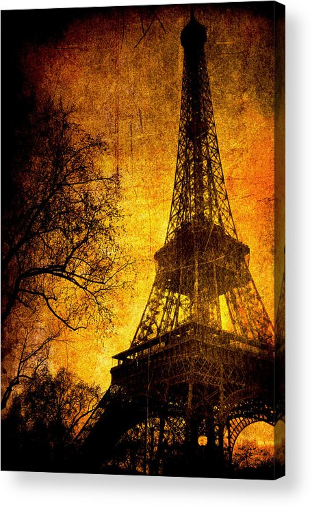 Eiffel Acrylic Print featuring the photograph Esthetic Luster by Andrew Paranavitana