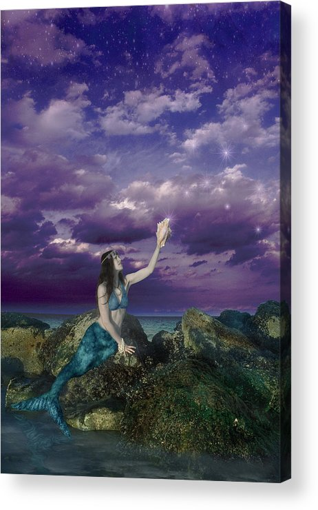 Dream Mermaid Acrylic Print featuring the photograph Dream Mermaid by Alixandra Mullins