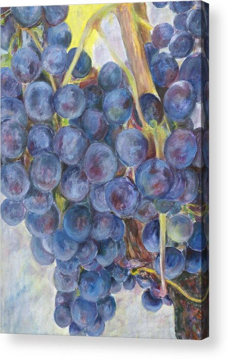 Grapes Acrylic Print featuring the painting Napa Grapes 1 by Nick Vogel