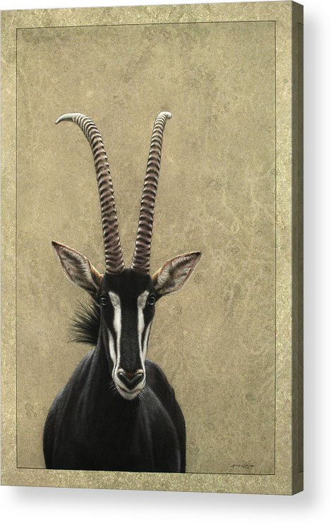 Sable Acrylic Print featuring the painting Sable by James W Johnson