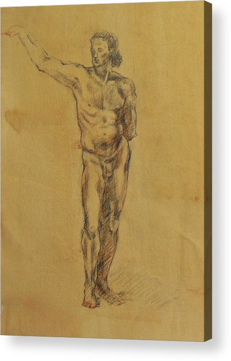 Nude Acrylic Print featuring the drawing Male Nude 5 by Becky Kim