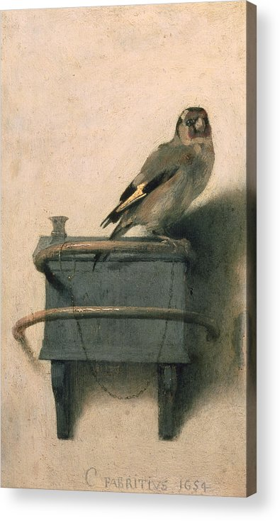 Bird Acrylic Print featuring the painting The Goldfinch by Carel Fabritius