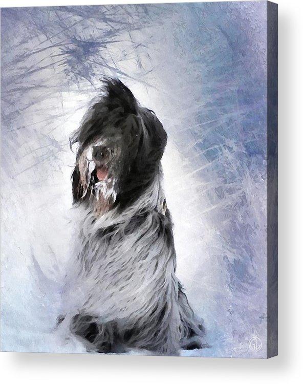 Animal Acrylic Print featuring the digital art Little Doggie In A Snowstorm by Gun Legler