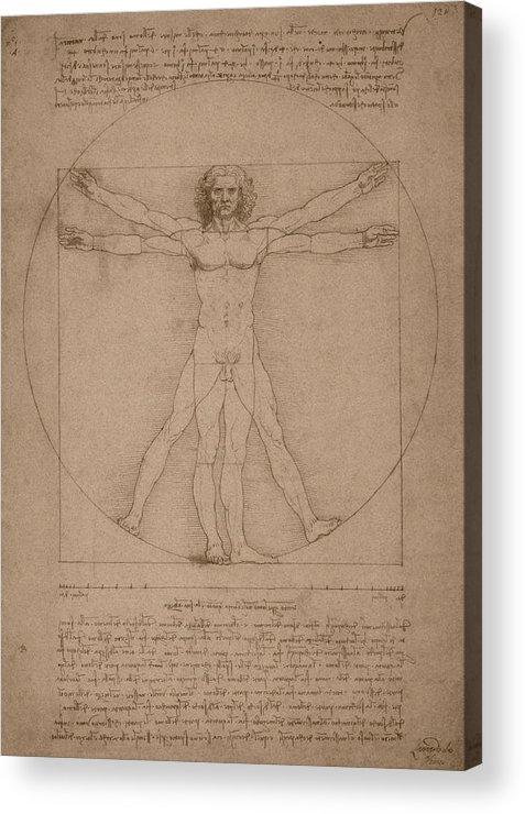 Leonardo Da Vinci Acrylic Print featuring the drawing Vitruvian Man by War Is Hell Store
