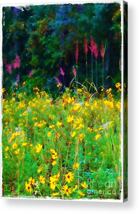 Sunflowers Acrylic Print featuring the photograph Sunflowers And Grasses by Judi Bagwell