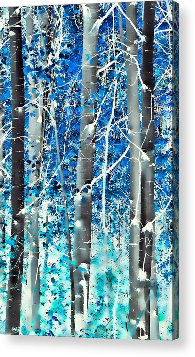 Aspens Acrylic Print featuring the photograph Lost In A Dream by Don Schwartz