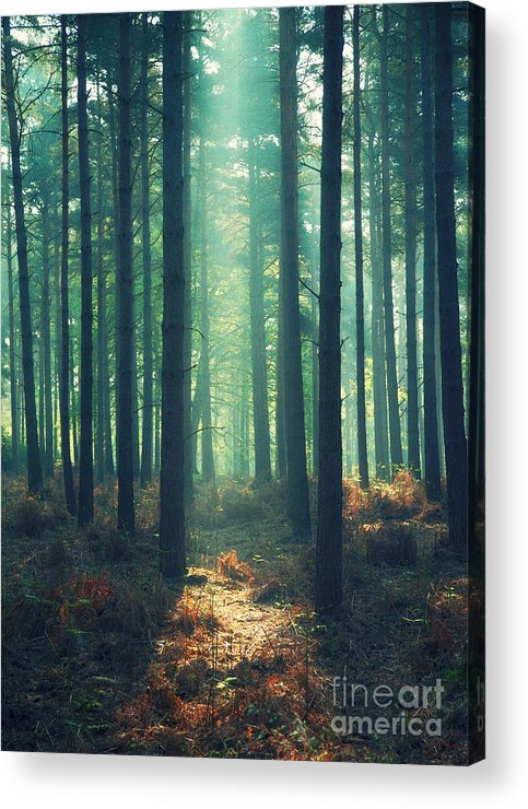 Rayon Vert Acrylic Print featuring the photograph The Green Ray by Paul Grand