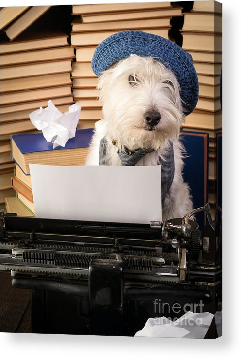 Dog Acrylic Print featuring the photograph Writer's Block by Edward Fielding