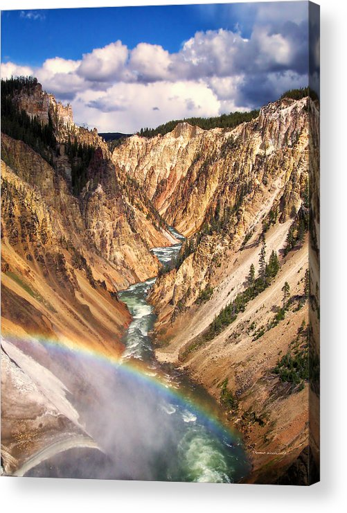 Yellowstone Acrylic Print featuring the photograph Grand Canyon Of Yellowstone 1 by Thomas Woolworth
