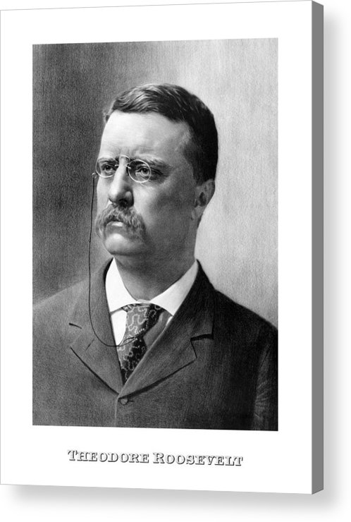 theodore roosevelt franklin d roosevelt and