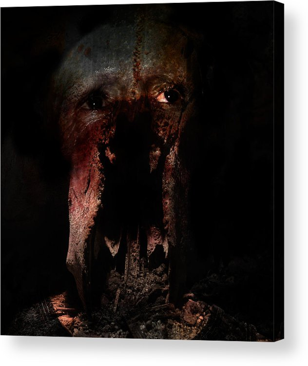Photography Acrylic Print featuring the photograph Seeing In Dreams by David Fox