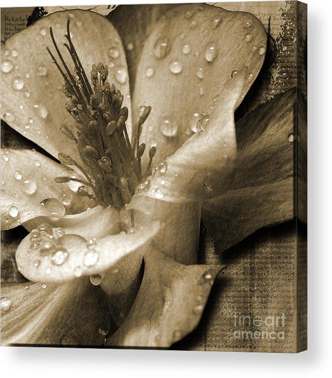Acrylic Print featuring the mixed media Beauty II by Yanni Theodorou