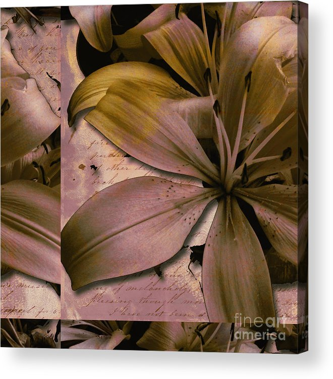 Acrylic Print featuring the mixed media Bliss by Yanni Theodorou