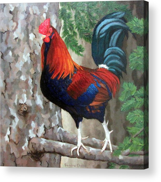 Roosters Acrylic Print featuring the painting Roscoe The Rooster by Sandra Chase