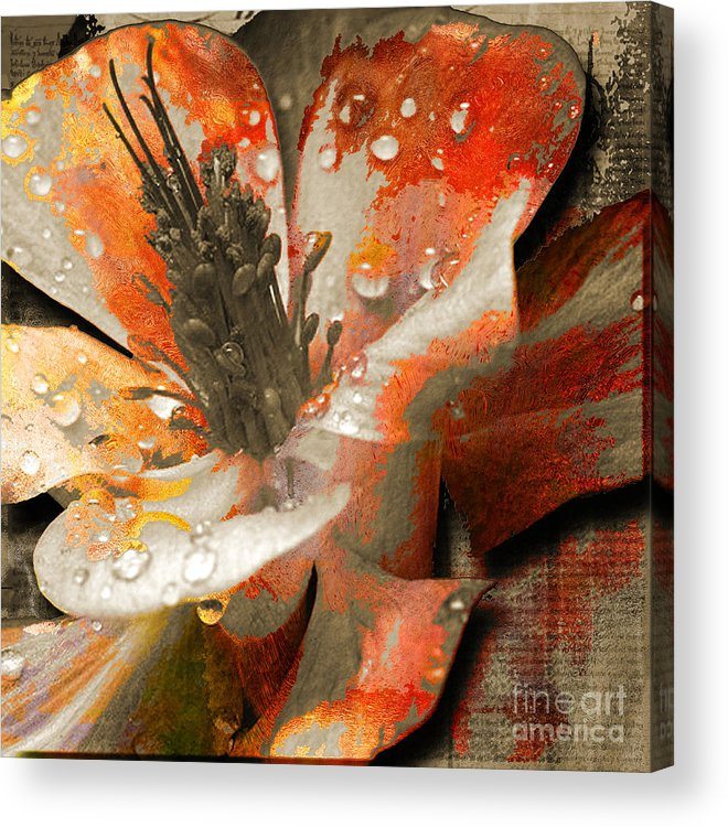 Acrylic Print featuring the mixed media Seeds by Yanni Theodorou
